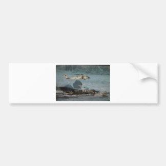 Navy Blackhawk Operations Bumper Sticker