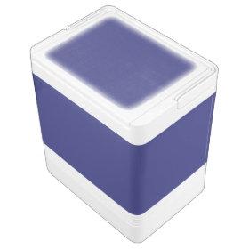 Navy Blue Igloo Cooler