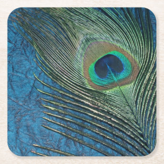 Navy Peacock Square Paper Coaster