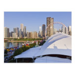 Navy Pier and Downtown Chicago Postcard