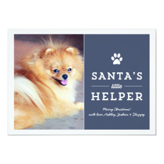 Navy Santa's Helper- Pet Photo Holiday Cards