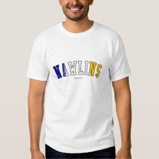 Nawlins in Louisiana state flag colors Shirt