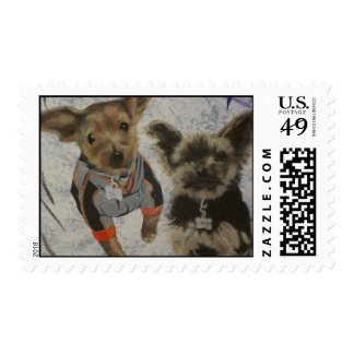 NC Dogs Stamp