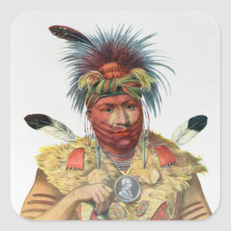 Ne-Sou-A-Quoit, a Fox Chief Stickers