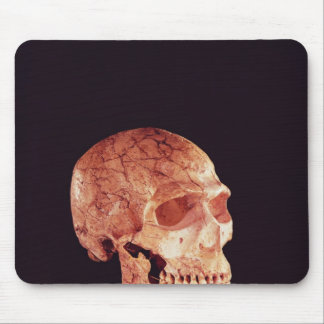 Neanderthal Skull, discovered on Mt Carmel Mouse Pad