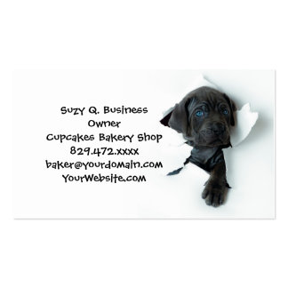 Neapolitan Mastiff black dog  Tearing Through Pack Of Standard Business Cards