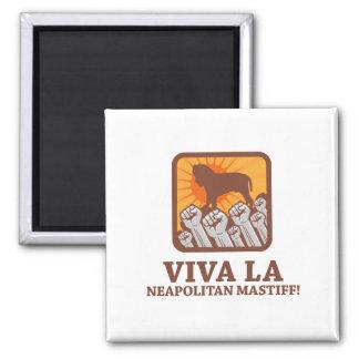 Neapolitan Mastiff Refrigerator Magnets