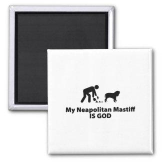 Neapolitan Mastiff Magnets