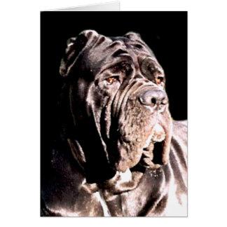 Neapolitan mastiff notecard