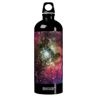Near a Red Star SIGG Traveler 1.0L Water Bottle