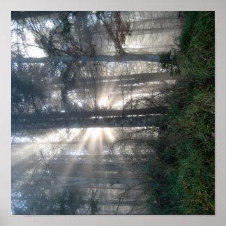 Nebelwald - presión de lienzo póster