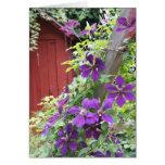 Neblina púrpura del verano tarjetón