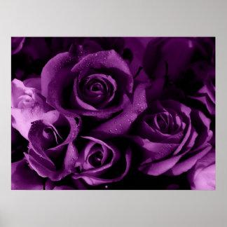 Neblina púrpura impresiones