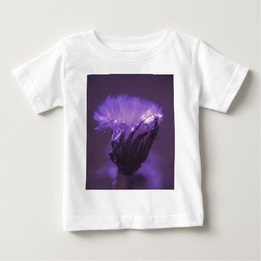 Neblina púrpura playeras