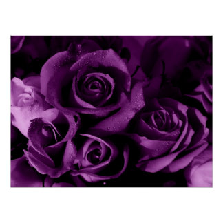 Neblina púrpura póster