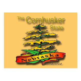 Nebraska Cornhusker State Goldenrod Postcard