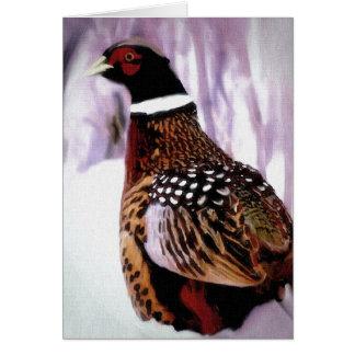 Nebraska Pheasant Cards