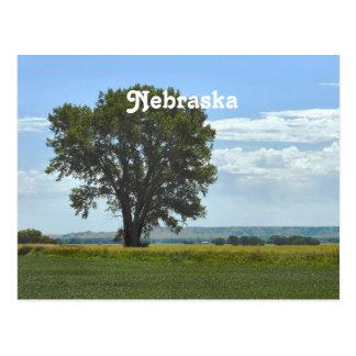 Nebraska Postcards