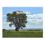 Nebraska Tarjetas Postales