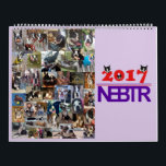 "NEBTR 2017 Calendar<br><div class=""desc"">The Northeast Boston Terrier Rescue 2017 contest calendar has all 40 of the entrants to the contest posted on the front and back of the calendar because they are ALL winners! Proceeds from the sale of this calendar will go to vetting the NEBTR foster dogs. Thank you for supporting rescue...</div>"