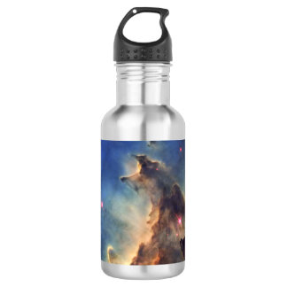 Nebula NGC 2174 Stainless Steel Water Bottle
