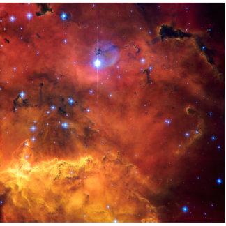 Nebula NGC 2647 NASA Space Astronomy Cutout
