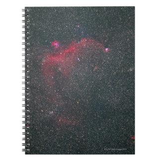 Nebulas Notebook