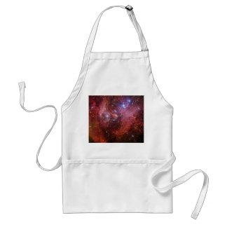 Nebulosa corriente del CEN de la lambda de la Delantal