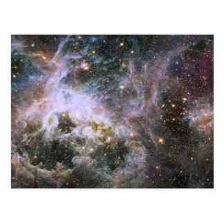 Nebulosa cósmica del Tarantula del bicho Tarjetas Postales