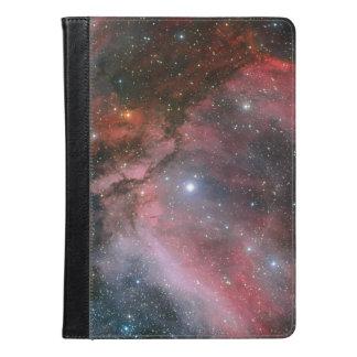 Nebulosa de Carina alrededor de la estrella WR 22