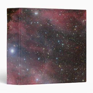 """Nebulosa de Carina, estrella WR 22 del Lobo-Rayet Carpeta 1 1/2"""""""