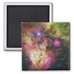 Nebulosa de Carina - nuestro universo impresionant Imán Cuadrado