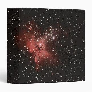 "Nebulosa de Eagle Carpeta 1 1/2"""