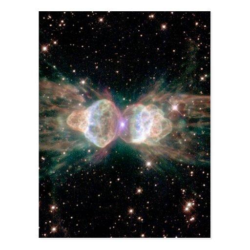Nebulosa de la hormiga postales