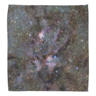 Nebulosa de la langosta bandanas