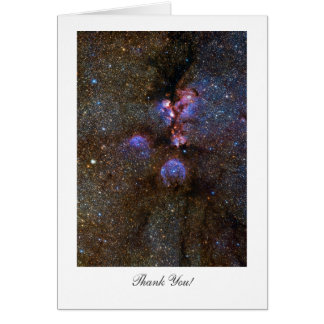 Nebulosa de la pata del gato - diciendo gracias tarjeta de felicitación