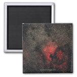 Nebulosa de Norteamérica y nebulosa del pelícano Imán Cuadrado
