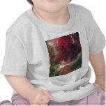 Nebulosa del alma camisetas
