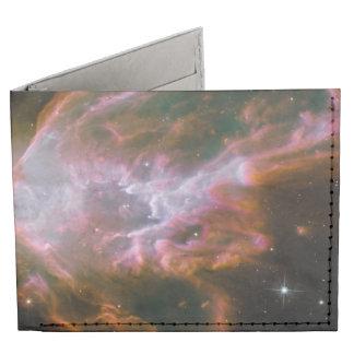 Nebulosa del insecto, nebulosa de la mariposa, NGC Billeteras Tyvek®