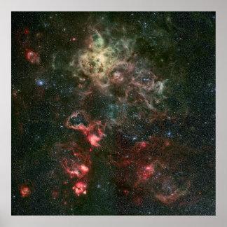 Nebulosa del Tarantula y sus alrededores Póster