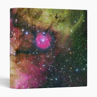 Nebulosa NGC 2467 del cúmulo de estrellas