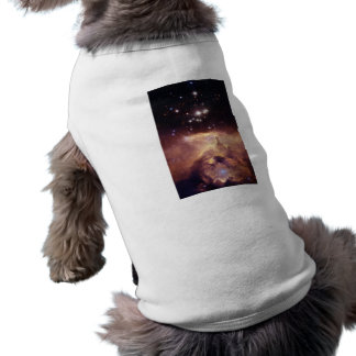 Nebulosa Playera Sin Mangas Para Perro