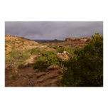 Neck Springs Trail at Canyonlands National Park Poster