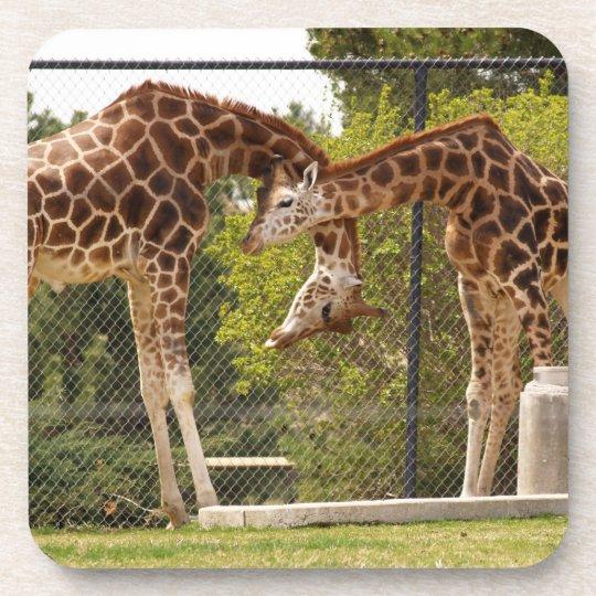 Necking Giraffes Cork Coaster