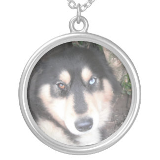 Necklace Husky One Blue Eye One Brown Eye