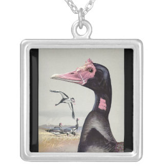 Necklace-Vintage Chicago Art-Abyssinian Birds 20 Silver Plated Necklace
