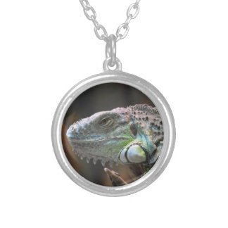 Necklace with head of colourful Iguana lizard