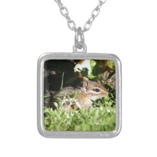 necklace with photo of cute chipmunk