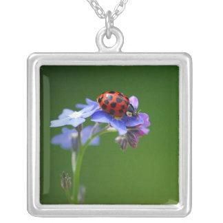 Necklakes - Halskette  Ladybird Square Pendant Necklace
