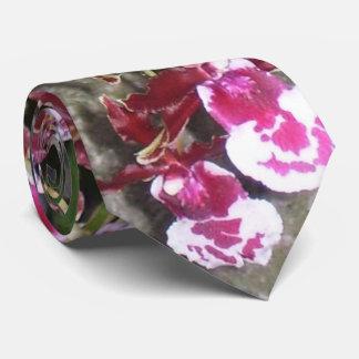 Necktie - Tolumnia Jairak Rainbow Orchid